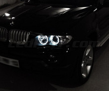 Kit angel eyes a LED per BMW X5 (E53) - standard