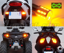 Kit indicatori di direzione posteriori a LED per Harley-Davidson Road King Custom 1450