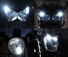 Kit luci di posizione a led (bianca Xenon) per Harley-Davidson XL 1200 N Nightster