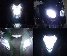 Kit lampadine fari effetto Xenon Effect per Yamaha YFM 400 Big Bear